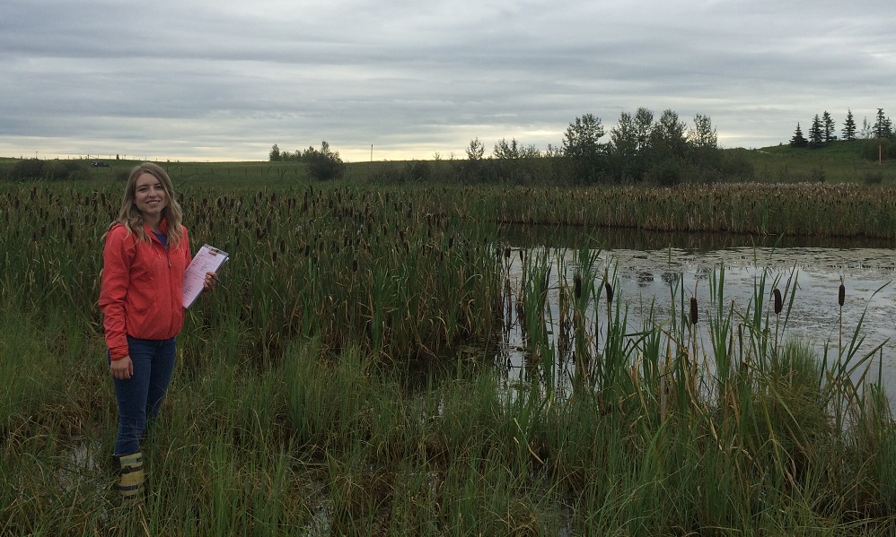 Woman beside cattails and marsh