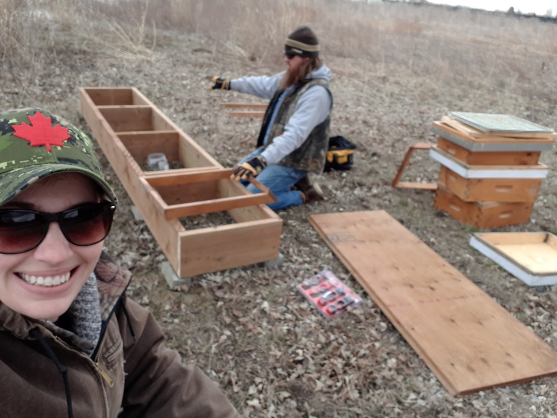 beekeepers building a hive